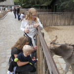 Zoo 2017 019