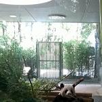 Zoo 2017 047