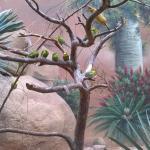Zoo 2017 049